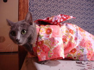 kimono-f1.jpg