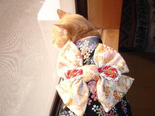 kimono-n3.jpg