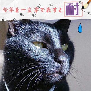yoru131231.jpg